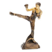 Pokal-Themenwelt