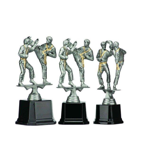 Kampfsport Pokale Judo & Karate | günstig online kaufen